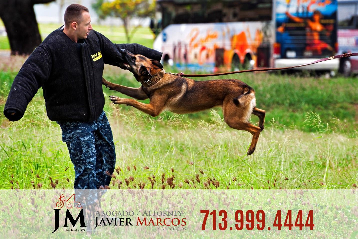 Ataque de perro | Abogado Javier Marcos | 713.999.4444